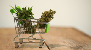Where and How to Buy Marijuana in Washington D.C.