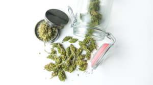 6 Reasons to Properly Store Cannabis